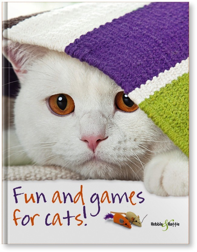 Seidl, Fun and games for cats!